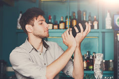 Bartender shaking and mixing alcohol cocktail. Young professional bartender in bar interior shaking and mixing alcohol cocktail with shaker in hands stock image