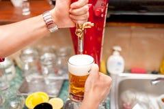 Bartender som bryggar utkastöl i bar arkivfoton