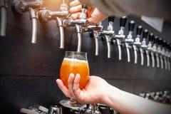 Bartender som häller det nya ölet i bar fotografering för bildbyråer