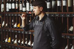 Bartender stands in cellar and smells wine in glass. Bartender in apron stands in vintage cellar full of bottles with alcohol drinks and smells red wine in glass stock photography