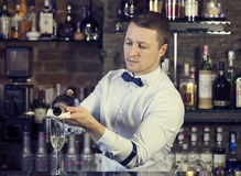 Bartender royalty free stock photos