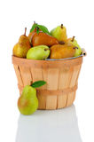 Bartlett and Bosc Pears in Basket Stock Photo