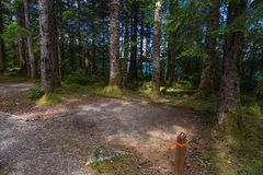 Bartlett Cove Campground, baie de glacier images stock