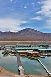 Bartlett Lake behållare, Maricopa County, tillstånd av Arizona, scenisk landskapsikt för Förenta staterna royaltyfri fotografi