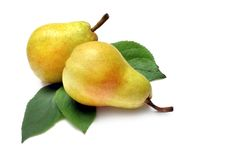 Bartlett Pear Stock Photo