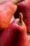 bartlett pears Arkivbild