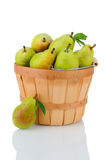 Bartlett Pears in Basket Royalty Free Stock Photography