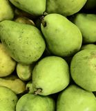 Bartlett pears, at produce mart in Oklahoma City. Medium to large in size ,they are available year-round stock photos