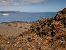 Bartolome wyspa, Galapagos archipelag Obraz Stock