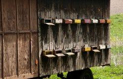 Bartosovice - apiary stock photo