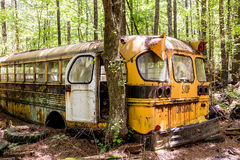 Bartow County School Bus Royalty Free Stock Images