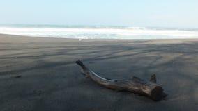 Baru da praia, Java Indonesia central fotografia de stock royalty free