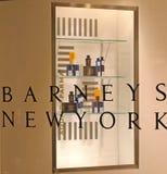 Baruffe New York Immagine Stock