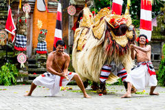 Barung Dancing Stock Image