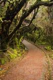 Barva Volcano National Park - Costa Rica Royaltyfria Bilder
