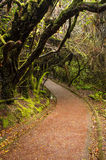 Barva Volcano National Park - Costa Rica Royalty Free Stock Images