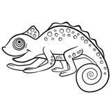 Barwić strony dzikich zwierząt Mały śliczny kameleon Obraz Royalty Free
