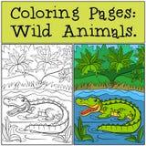Barwić strony: Dzikie Zwierzęta Mały śliczny aligator ilustracji