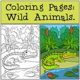 Barwić strony: Dzikie Zwierzęta Mały śliczny aligator ilustracja wektor