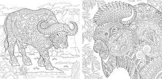 Barwić strony Kolorystyki książka dla dorosłych Koloryt obrazki z bizonem i żubrem Antistress freehand nakreślenie rysunek z ilustracji
