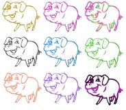 barwi świnia symbole Fotografia Stock