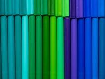 Barwić pióra Zdjęcia Stock