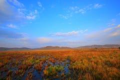 barwi ranek Zdjęcie Stock