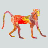Barwiona małpa Obraz Royalty Free