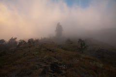 Barwiona mgła na wulkanie Rinjani, Lombok, Indonezja Obraz Royalty Free