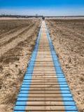 Barwiona plażowa droga Obraz Royalty Free
