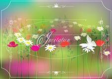 Barwiona zaproszenie karta również zwrócić corel ilustracji wektora Zdjęcie Royalty Free