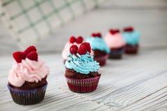 Barwione babeczki słodkie Obrazy Stock