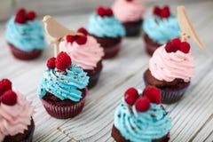 Barwione babeczki słodkie Fotografia Stock