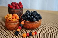 Barwione jagody czerwie?, malinki lub czernicy w earthenware, ? zdjęcia royalty free
