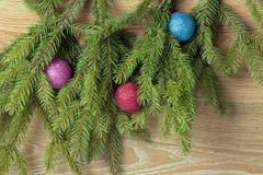 Barwione piłki są na jedlinowych drzewach Zdjęcia Stock