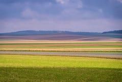 Barwione warstwy w polu Zdjęcie Stock