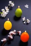 Barwione świeczki w formie Wielkanocnego jajka z kwiatu wzorem Zdjęcie Stock