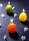 Barwione wosk świeczki w formie Wielkanocnego jajka z kwiatami Obraz Royalty Free