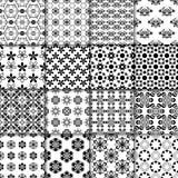 Barwionego kwiatu bezszwowy tło Czarny i biały ornamentacyjna kolekcja ilustracja wektor