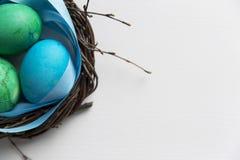 Barwioni błękitni Easter jajka w gałązki gniazdeczka Easter Szczęśliwym pojęciu Gre Fotografia Royalty Free