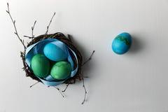 Barwioni błękitni Easter jajka w gałązki gniazdeczka Easter Szczęśliwym pojęciu Gre Zdjęcia Royalty Free