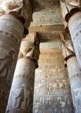 Barwioni frescoes na ścianach kolumny i suficie Zdjęcia Stock