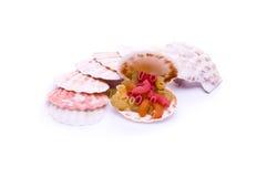 barwioni makaronowi seashells Zdjęcie Royalty Free