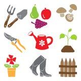 barwioni ogrodnictwa ikon rośliien narzędzia Zdjęcia Stock