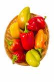 Barwioni pieprze Zdjęcie Stock