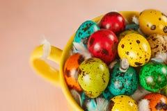 Barwioni przepiórek jajka w żółtym pucharze Wielkanocny wiosna wakacje pojęcie Obrazy Stock