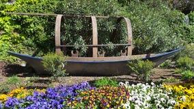 Barwiony flowerbed Obraz Stock