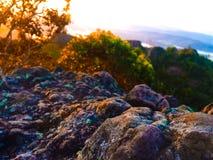 Barwiony kamień Zdjęcia Royalty Free