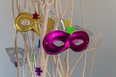 Barwiony karnawał maskuje obwieszenie od gałąź dla dekoracji zdjęcie royalty free