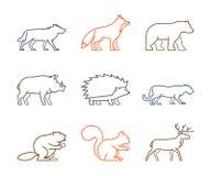 Barwiony konturu set lasowi zwierzęta royalty ilustracja